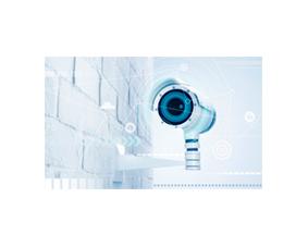 L'IEMN et l'IRCICA valorisent leur technologie de capteurs d'images bioinspirés auprès d'un industriel de l'IA
