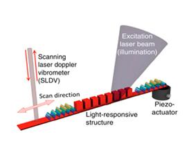 Moduler les propriétés élastiques d'un matériau par des stimuli lumineux